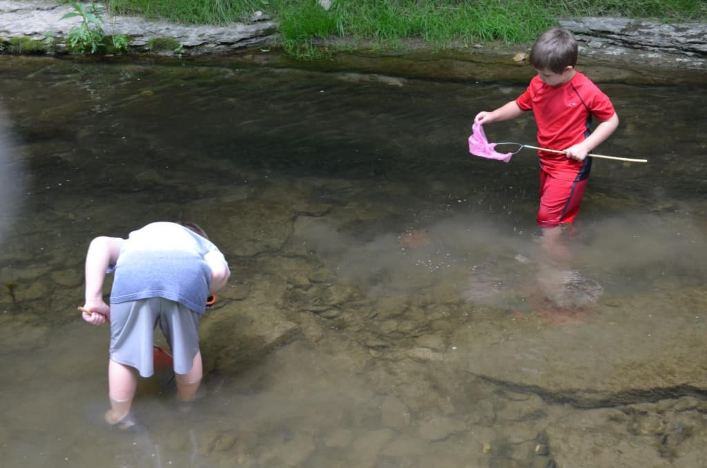 Catching crawfish Spook Cave & Campground in MacGregor, Iowa