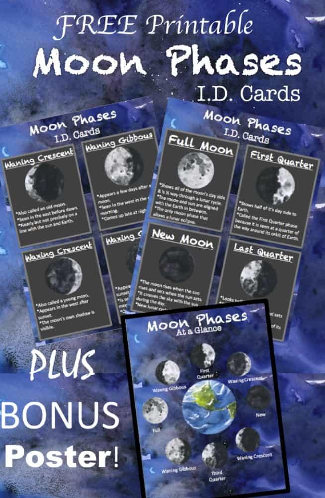 FREE Printable Moon Phases ID Cards plus BONUS Space Poster