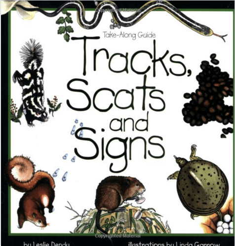 Tracks Scats and Signs Nature Book for KIds