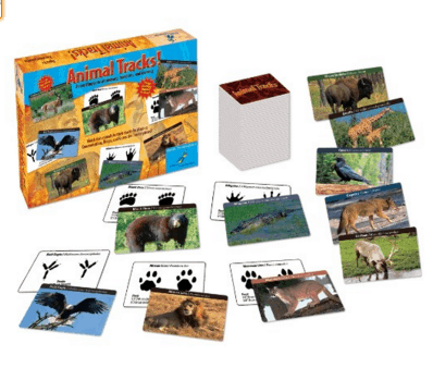 Animal Tracks Science Card Game for kids