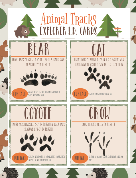 Animal Tracks Explorer ID Cards