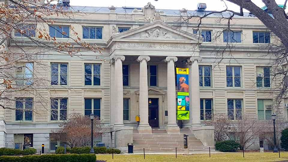 University of Iowa Natural History Museum - BEST Places to Visit in Central East Iowa