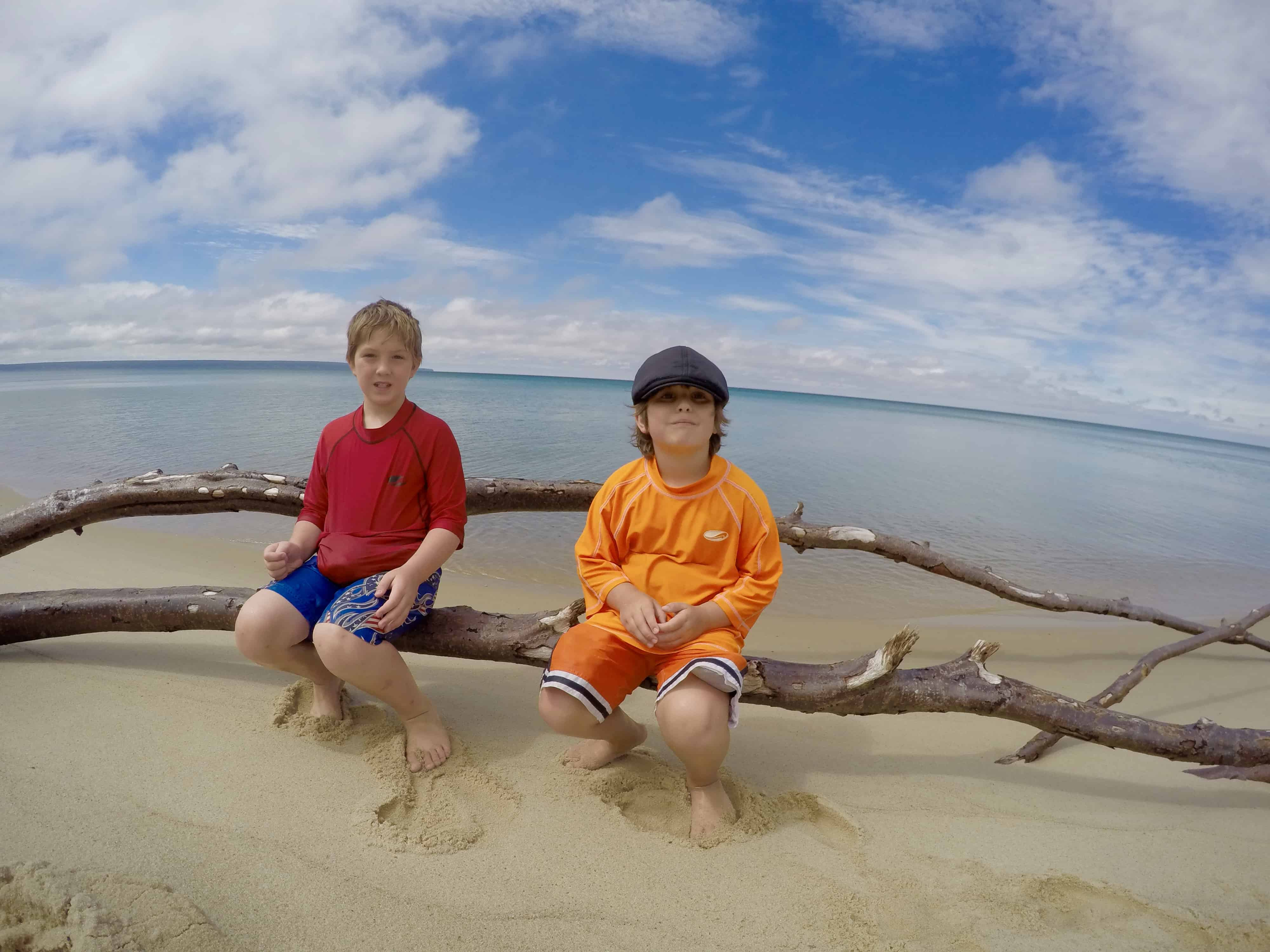 boys sitting on tree branch in front of Lake Superior Michigan
