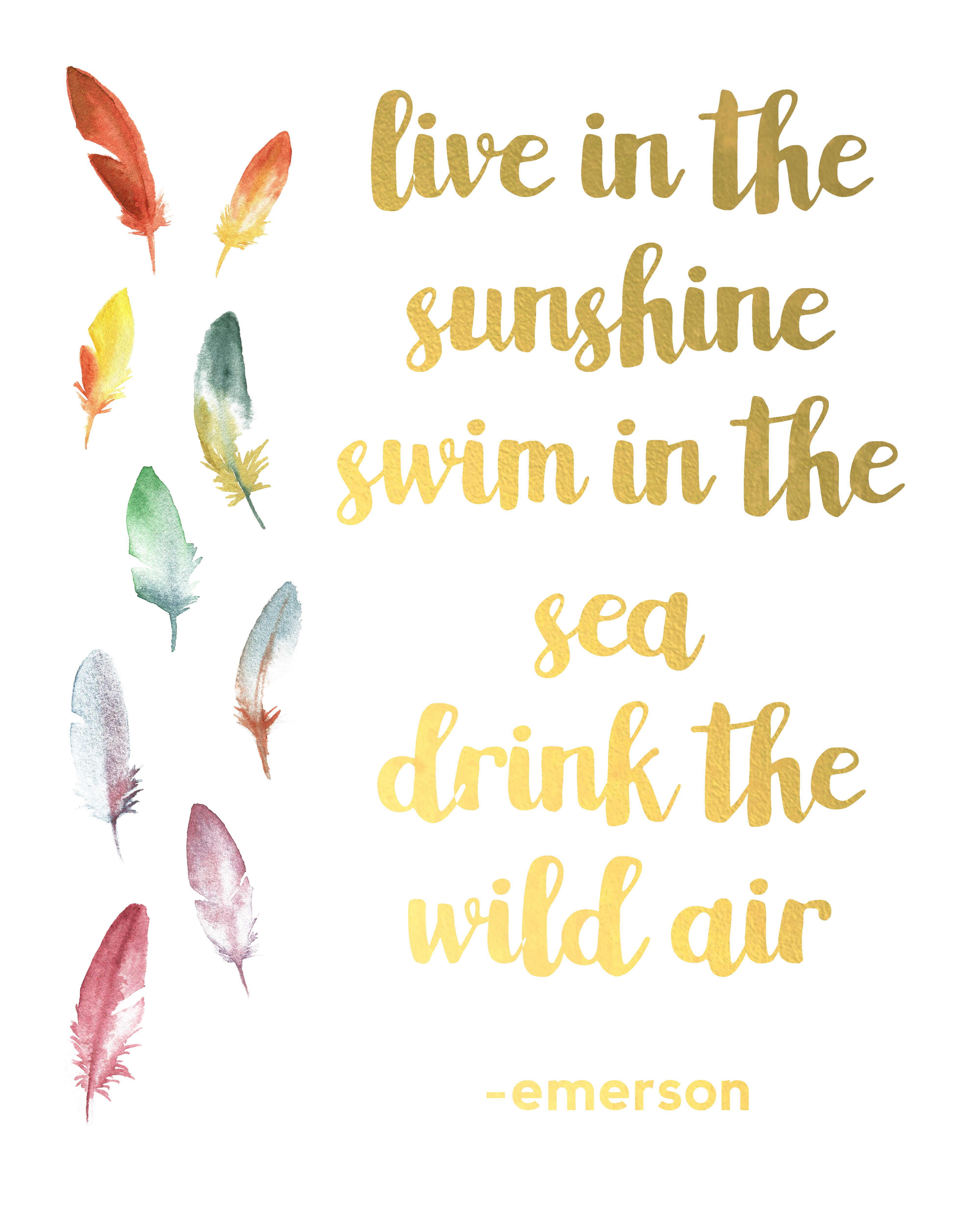 Free Printable Travel Wall Art - Live in the Sunshine, Swim in the Sea, Drink the wild Air
