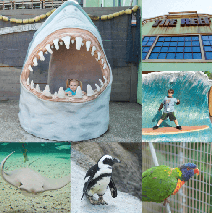 Insanely Fun Learning Adventures at the Zoo for All Ages in Fort Wayne, Indiana