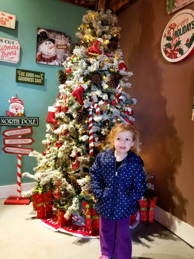 Where to See Santa Every Day of the Year in Illinois!