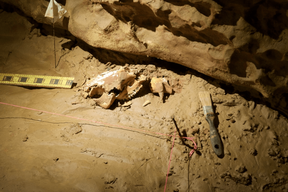 archaeological excavation site in cave