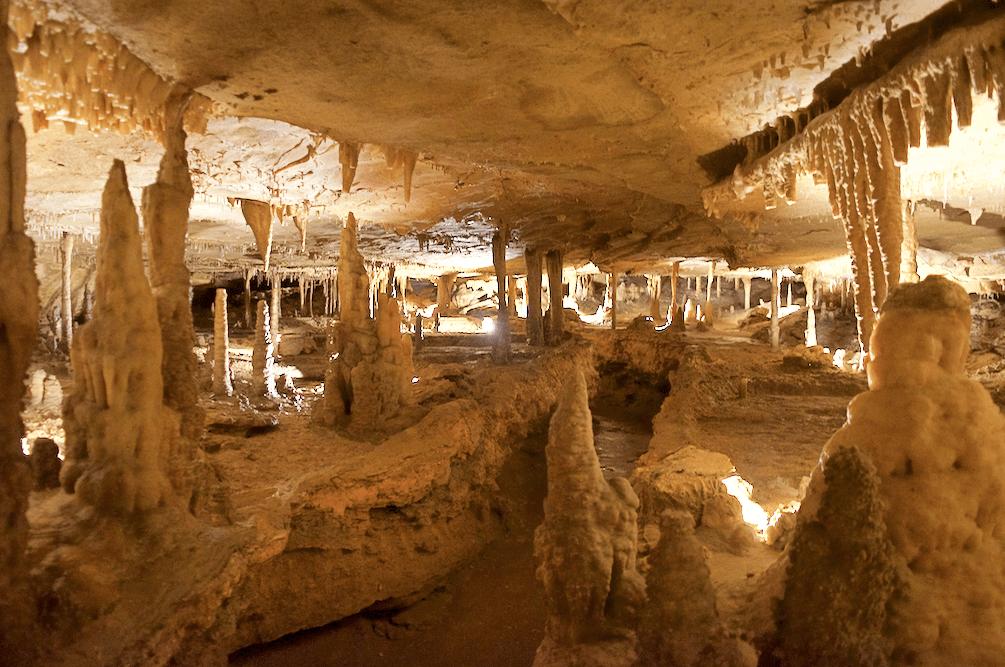 trail inside Marengo Cave National Landmark