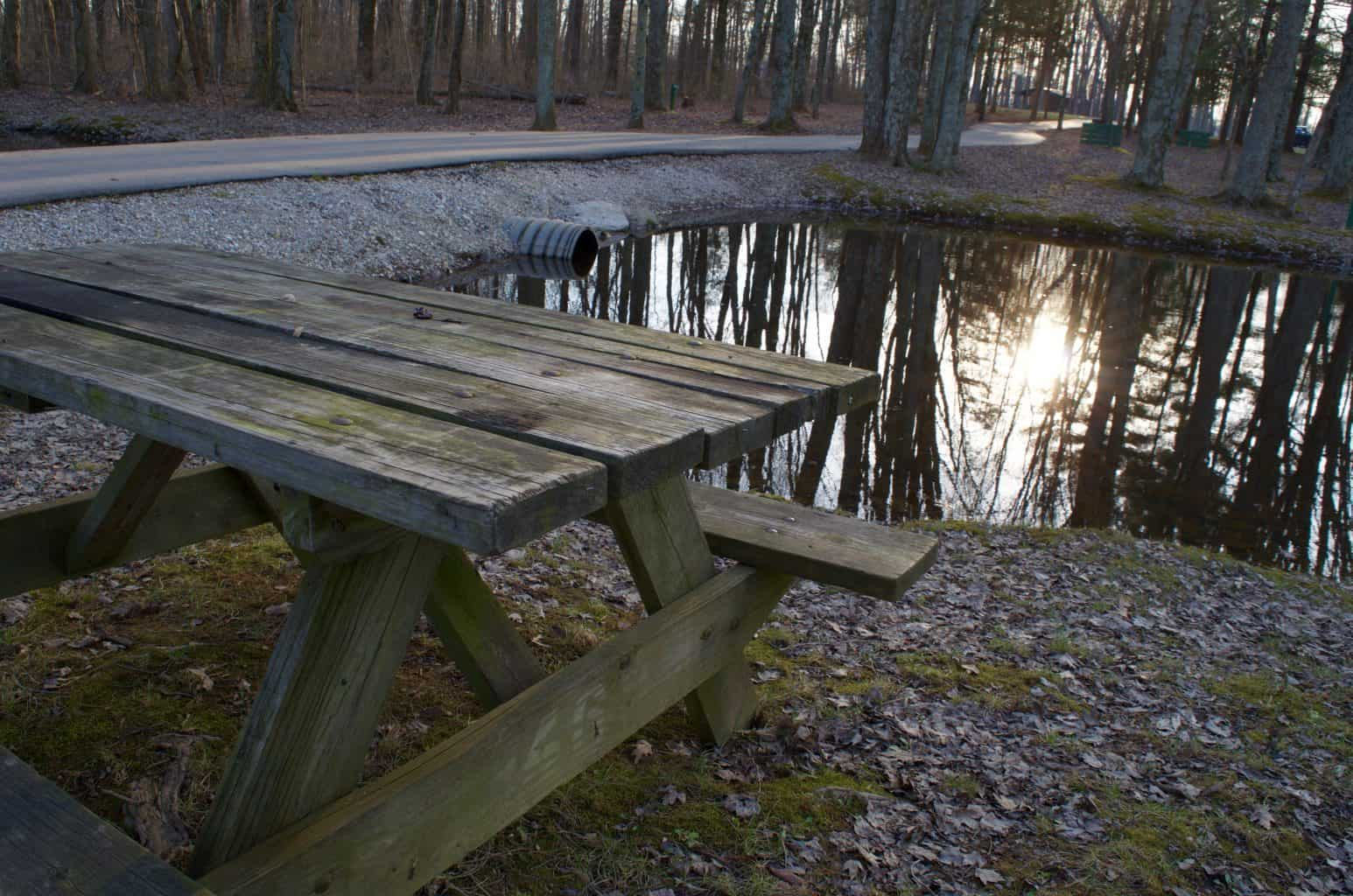 picnic table at Buffalo Trace Park