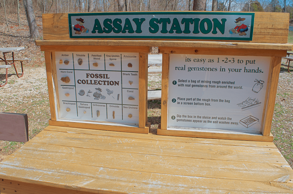 fossil identification station at Bluespring Caverns