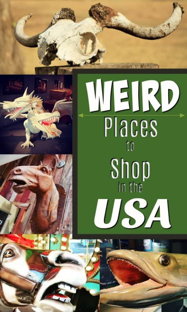 strange odd and weird shops in the USA