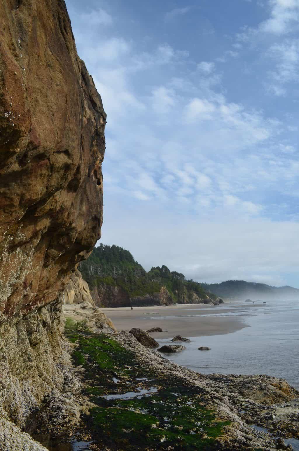 Hug Pointe State Park Oregon coast beach