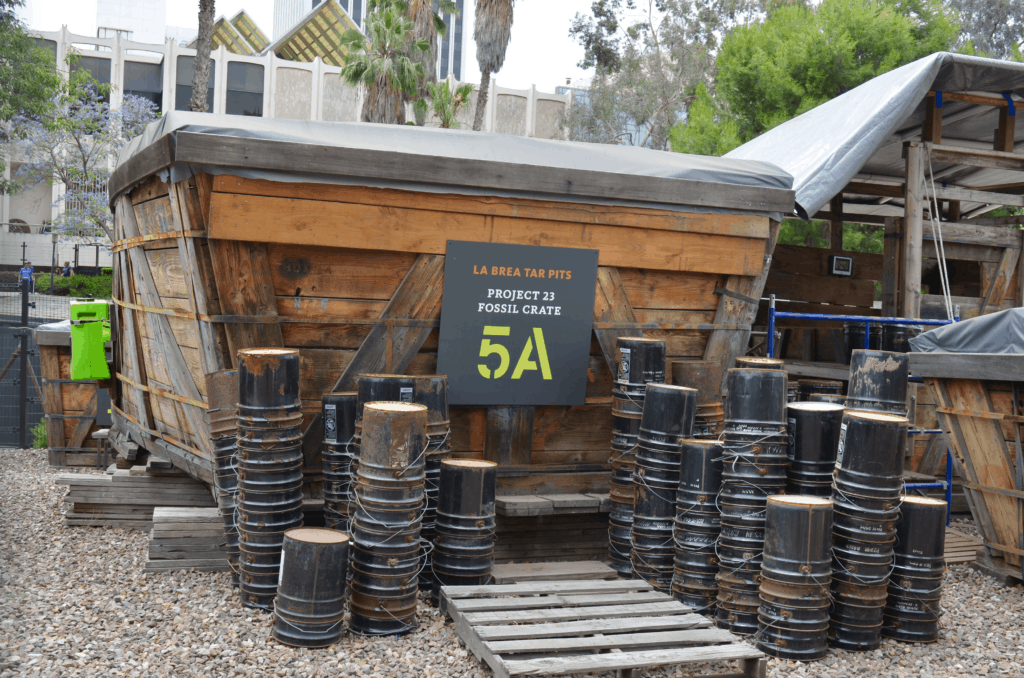project fossil crate La Brea Tar Pits LA Los Angeles