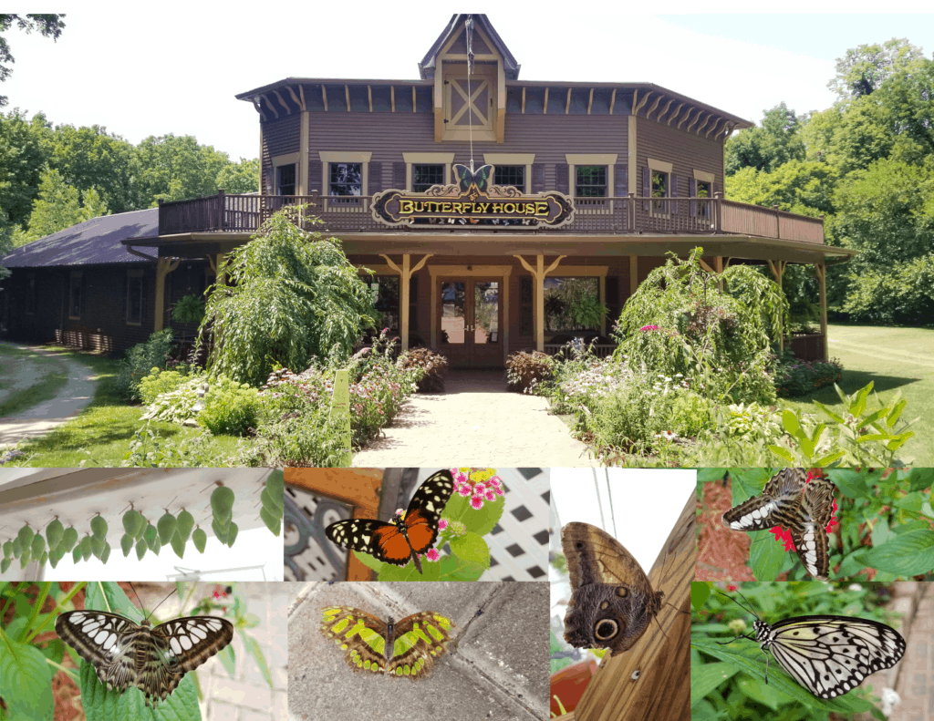 butterfly house put in bay ohio