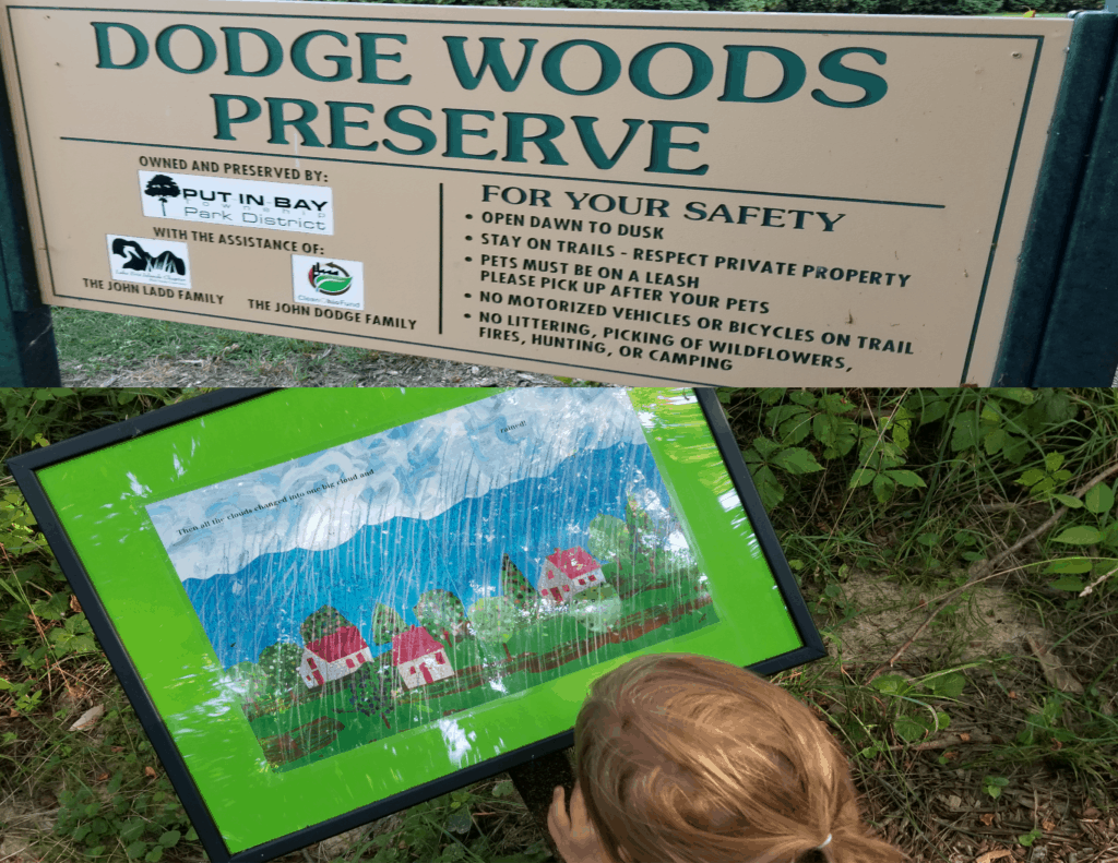 Dodge Woods Preserve nature trail