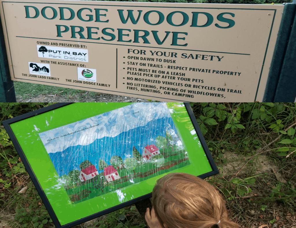 Dodge Woods Preserve nature trail