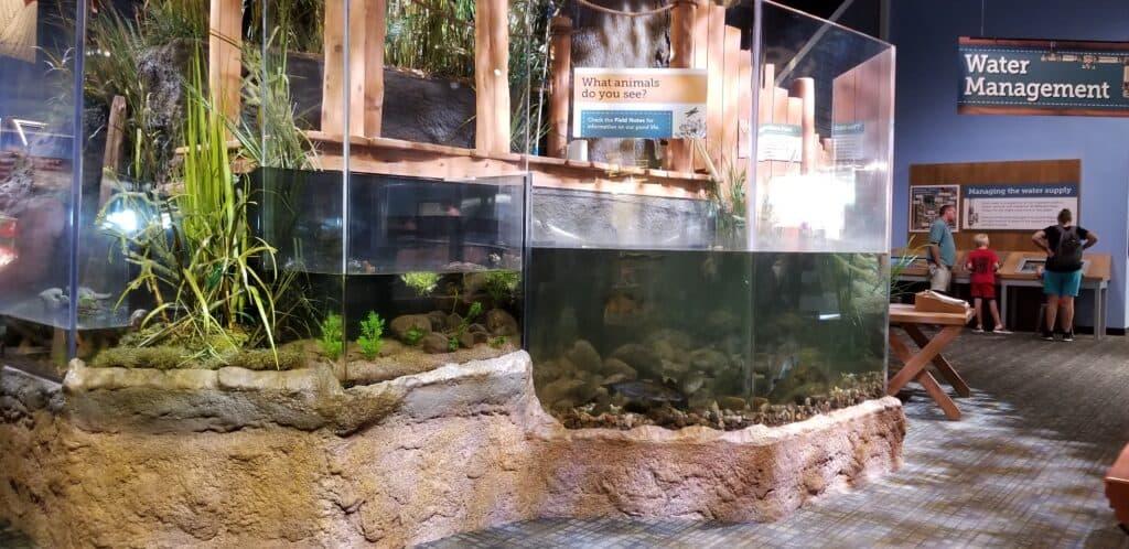 water play area children's museum