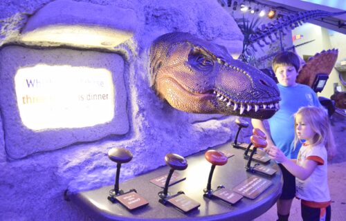 What is there to do at The Children's Museum of Indianapolis?