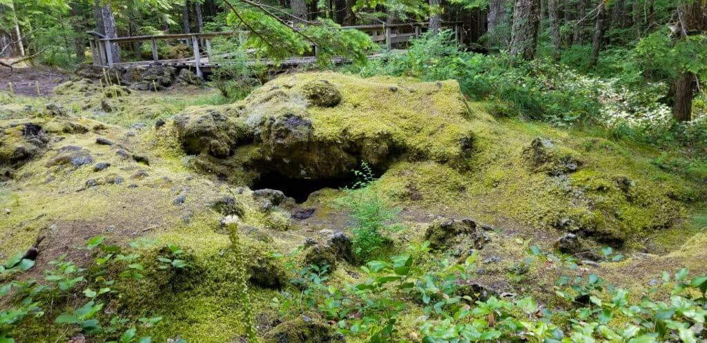 lava tube nature area Washington