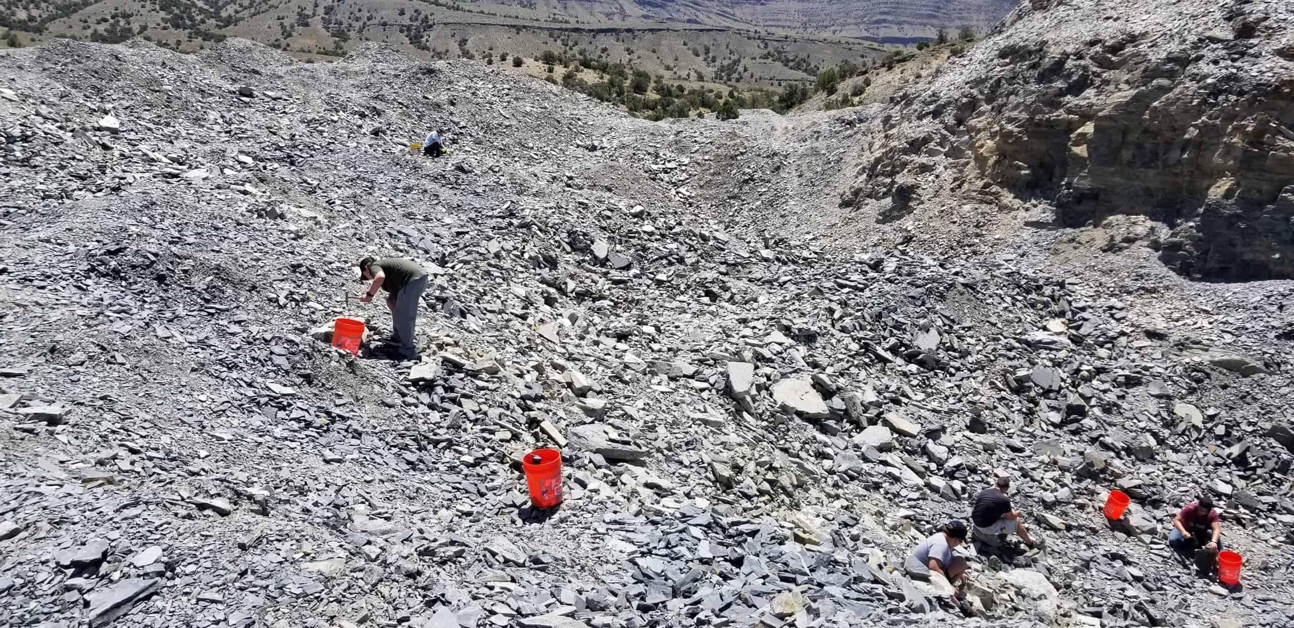 kids in U Dig Trilobite Quarry digging for fossils in Utah