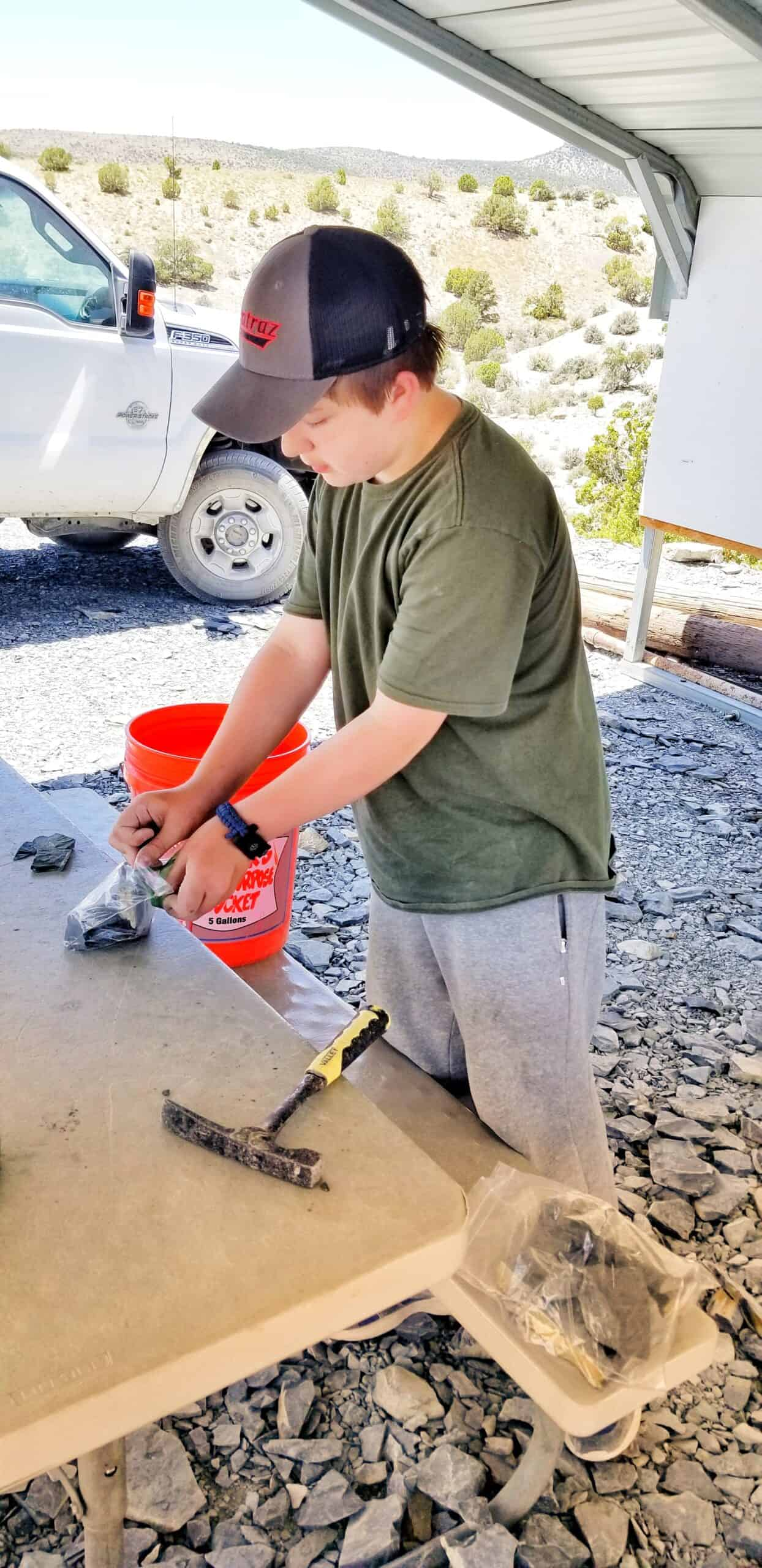 digging for fossils in Utah