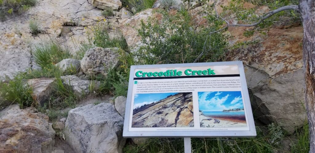 Crocodile Creek Dinosaur Ridge