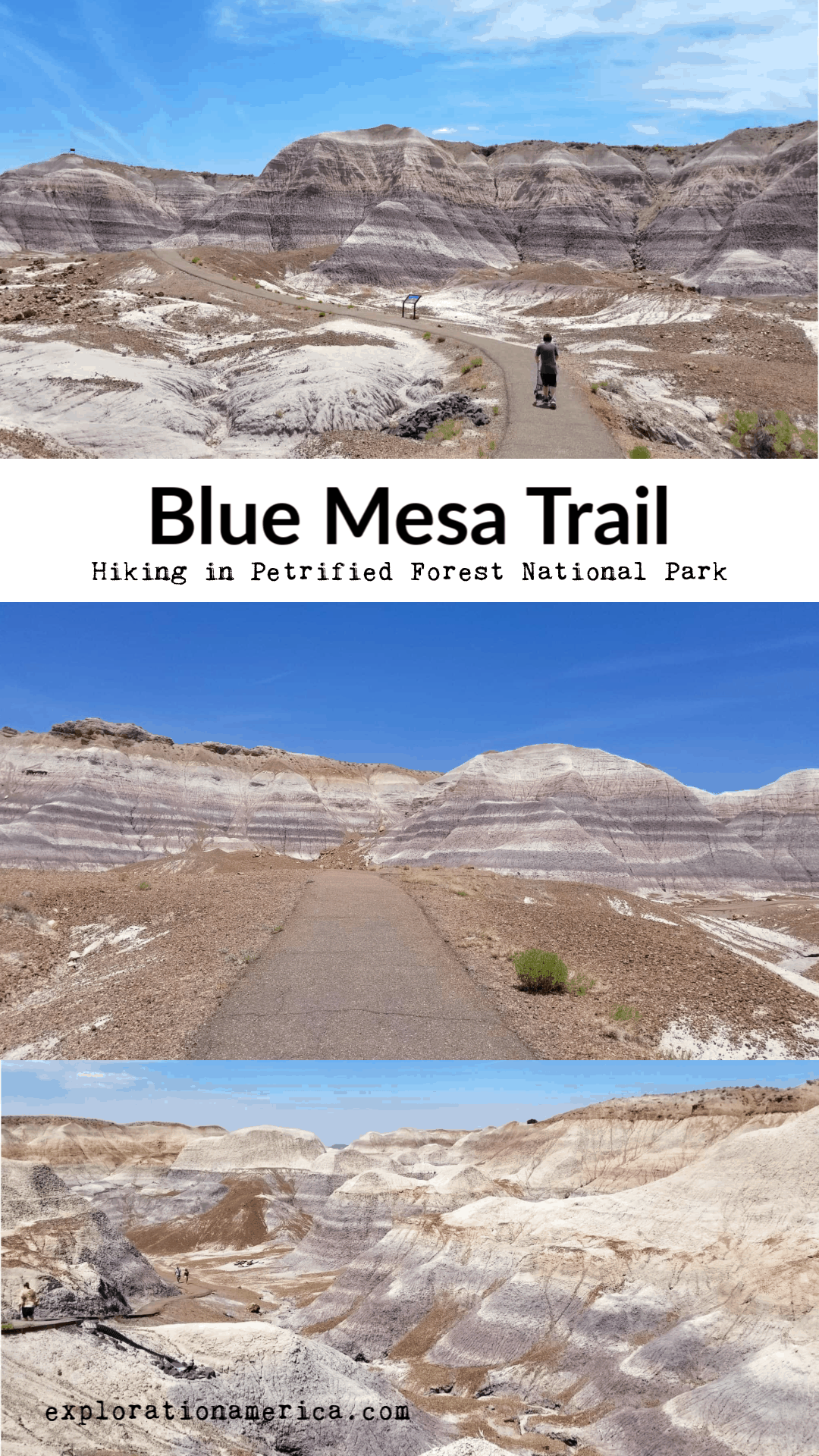 Blue Mesa trail in Petrified Forest