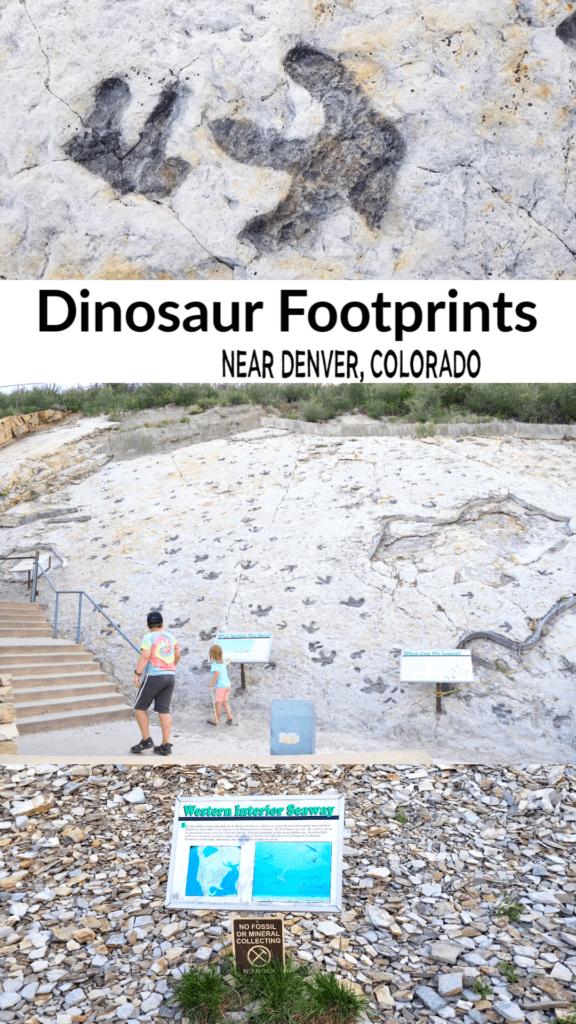 Dinosaur Ridge fossils in Denver Colorado