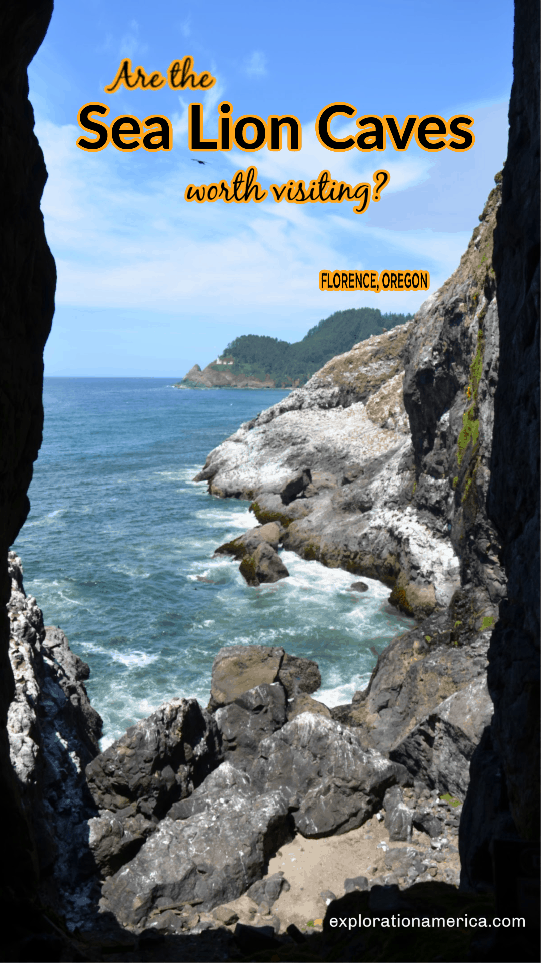 pacific ocean from sea lion caves