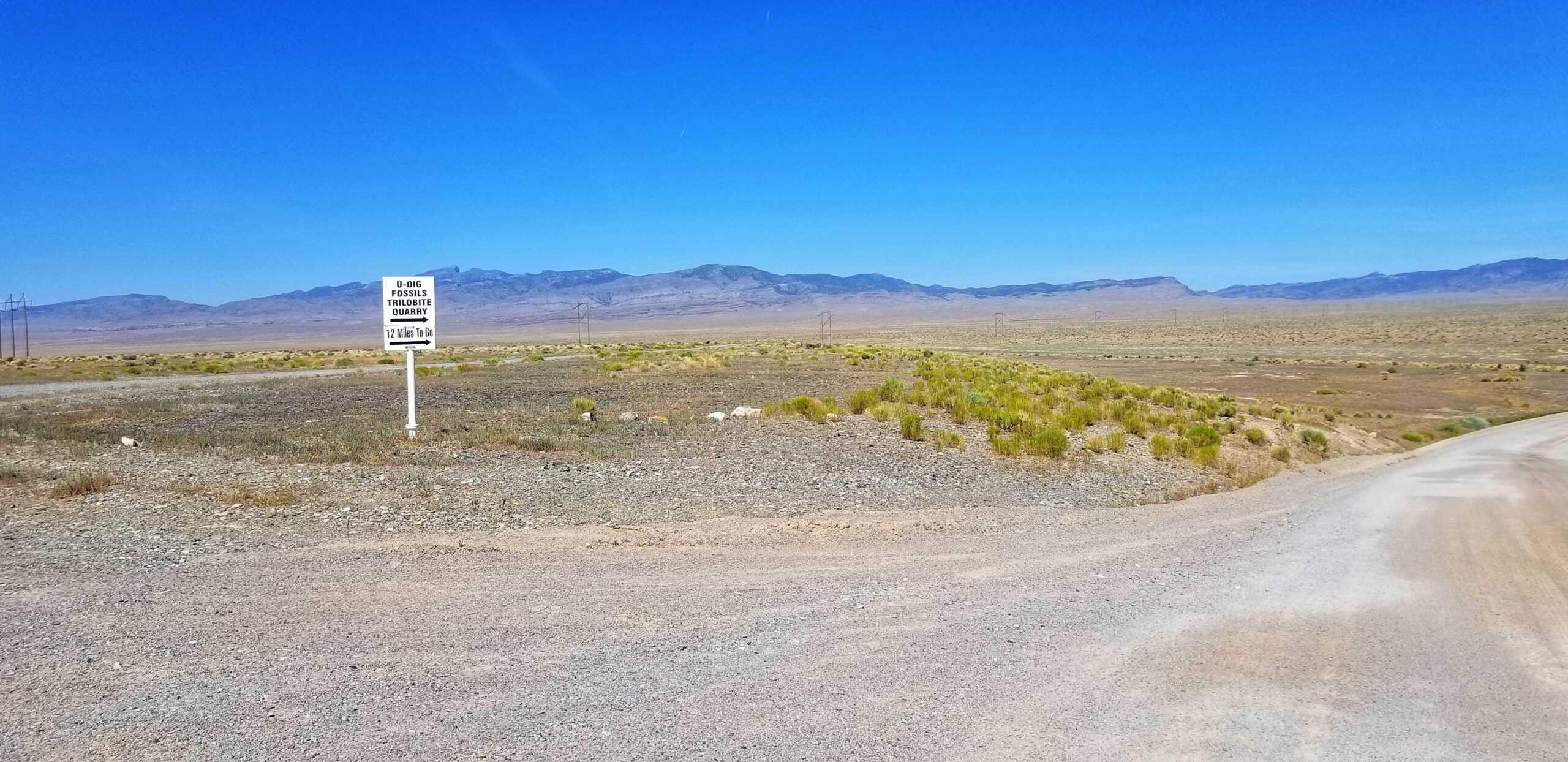 U Dig Trilobite Quarry road