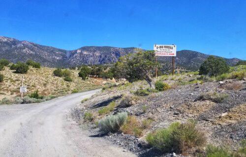 Where to Dig for Fossils in Utah – U Dig Trilobites