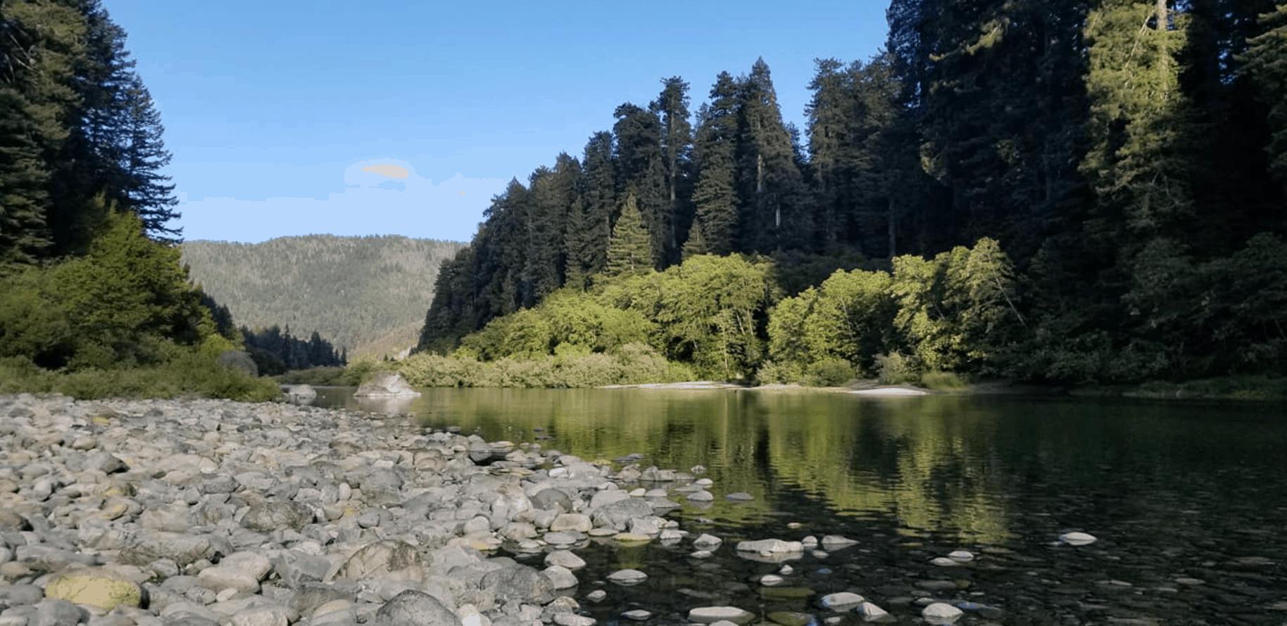 lake at Jedidiah Smith Redwoods state park