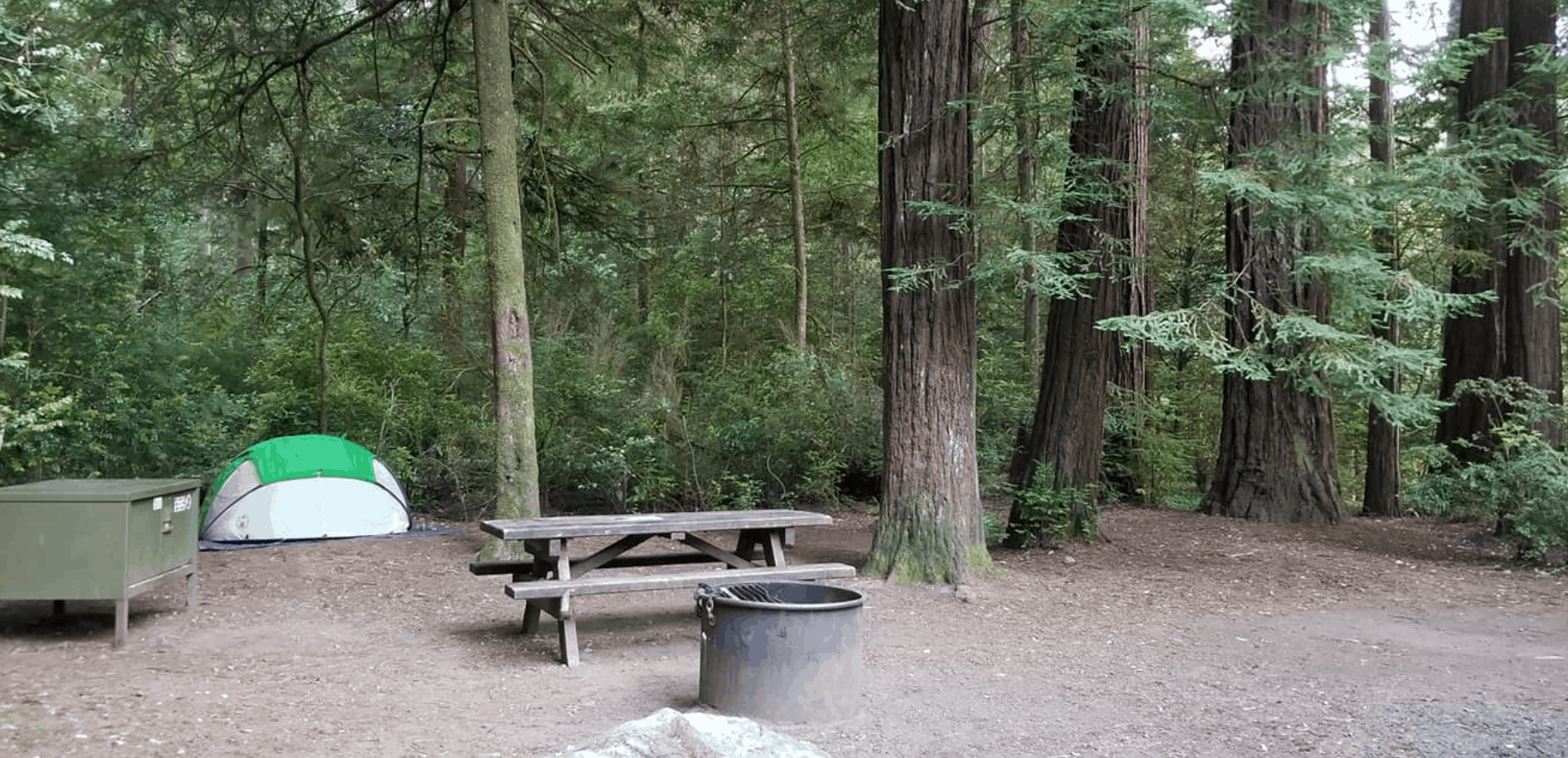 Jedidiah Smith Redwoods Campground