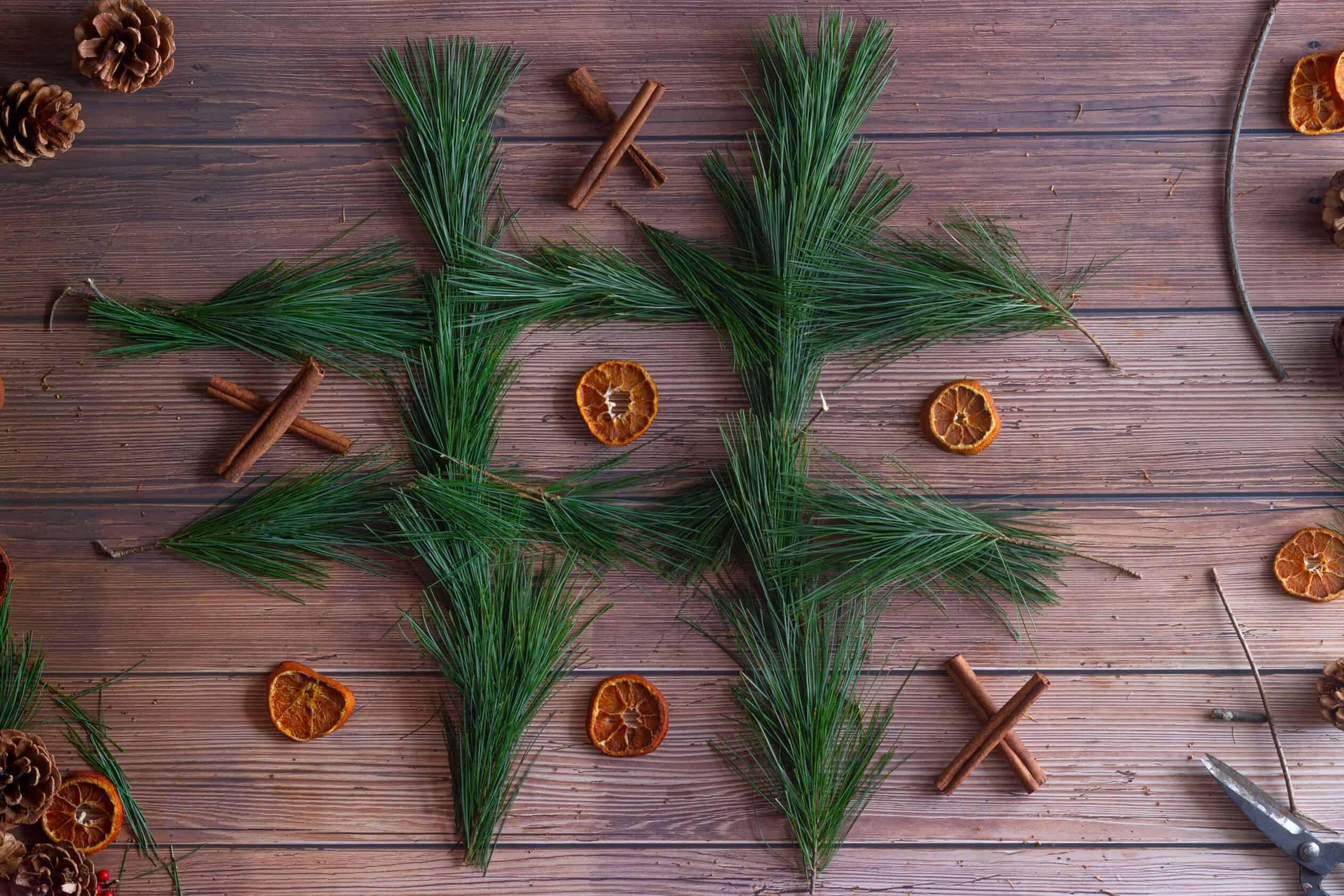 pine needles cinnamon and orange slices tic tac toe